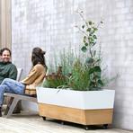Café Planter // Teak // Double Luxury
