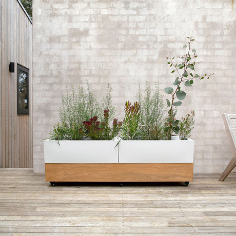 Café Planter // Teak (Double Luxury)