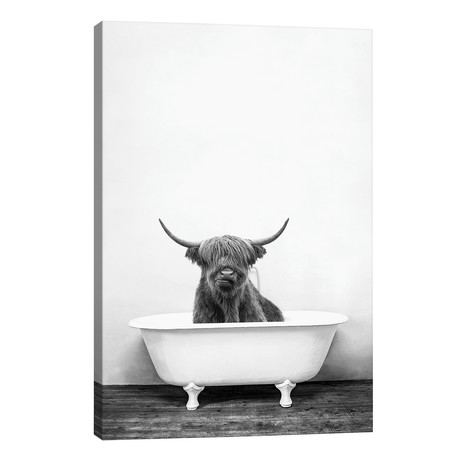 Highland Cow In Bathtub Black And White // Amy Peterson