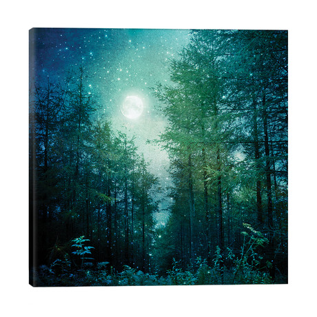 Enchanted Forest // Ros Berryman