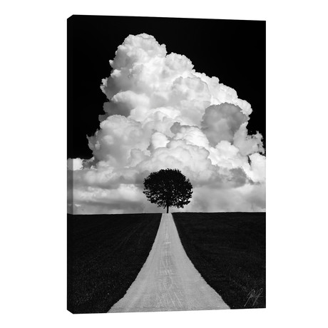 Double Tree // Kathrin Federer