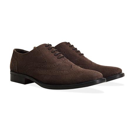 Suede Oxford Brogue Shoe // Brown (UK: 7)