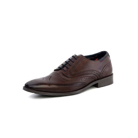 Lincoln Oxford Brogue // Brown (UK: 7)