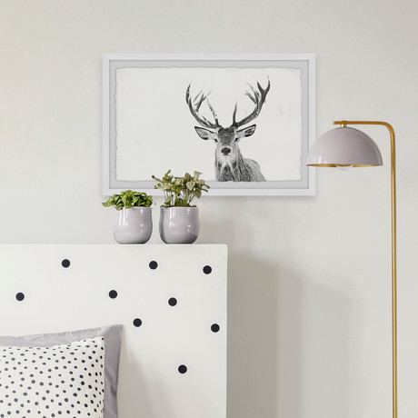 "Majestic Antlers (12""W x 8""H x 1.5""D)"