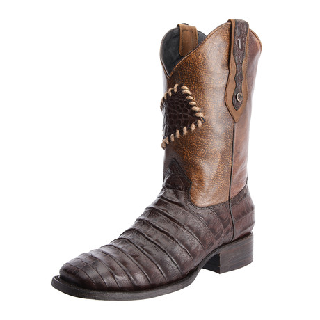 Rodeo Square Boot Caiman Parche Print // Brown (US: 7EE)