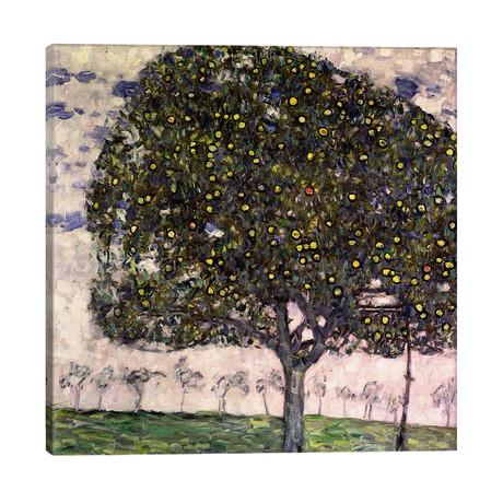 """The Apple Tree II, 1916 // Gustav Klimt (26""""W x 26""""H x 1.5""""D)"""