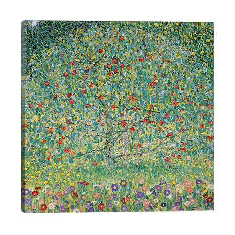 """Apple Tree (Apfelbaum), 1912 // Gustav Klimt (26""""W x 26""""H x 1.5""""D)"""