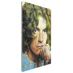 Robert Plant Shear Power (Acrylic // Glossy Finish)