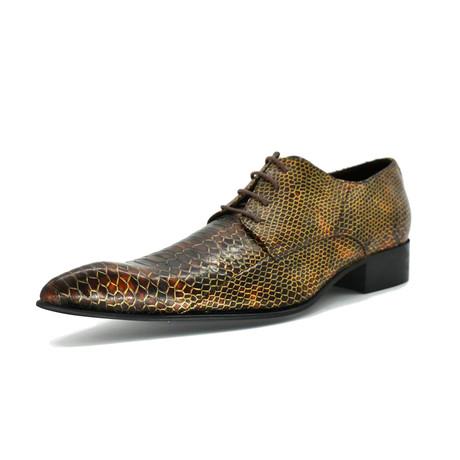 Dress Shoes // Brown Snake (Euro: 39)