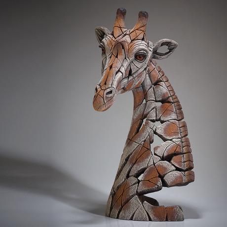 Giraffe Bust