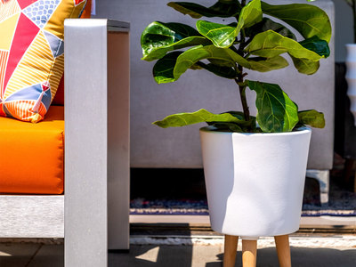 photo of Betty Planter by Touch Of Modern