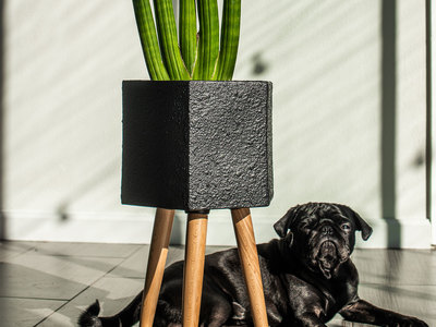 photo of Paul Ceramic Planter by Touch Of Modern