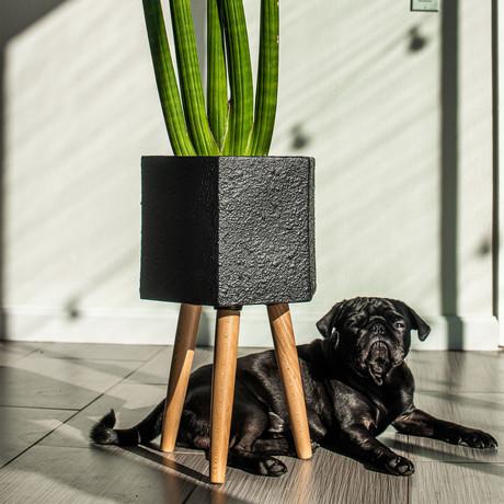 Paul Ceramic Planter