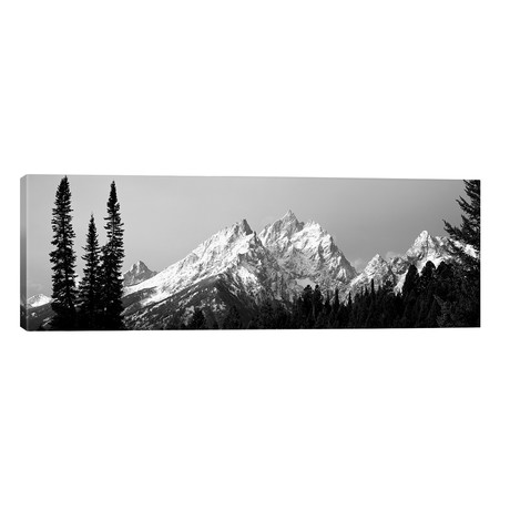 "Cathedral Group Grand Teton National Park WY // Panoramic Images (60""W x 20""H x 0.75""D)"