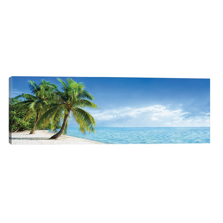 "Tropical Beach Panorama With Palm Trees // Jan Becke (60""W x 20""H x 0.75""D)"