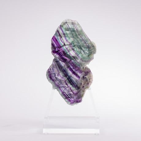 Fluorite Slice + Acrylic Stand // Ver. I