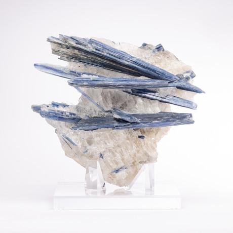 Brazilian Blue Kyanite Crystals & Quartz Matrix + Acrylic Stand