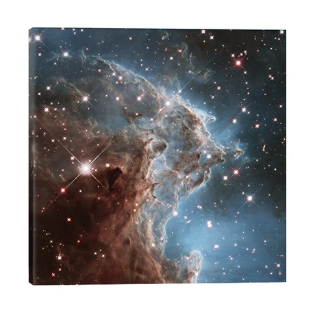 "NGC 2174 (Monkey Head Nebula) (Hubble Space Telescope 24th Anniversary Image) // NASA (26""W x 26""H x 1.5""D)"