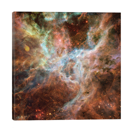 Symphony Of Colours, Hodge 301, R136, Tarantula Nebula // NASA
