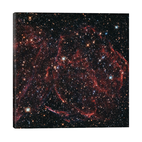 "A Long-Dead Star (Remnants Of A Supernova), DEM L316A // NASA (26""W x 26""H x 1.5""D)"
