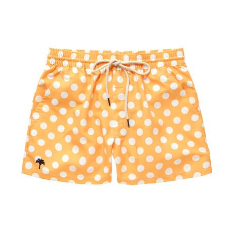Honey Dot // Yellow (Small)