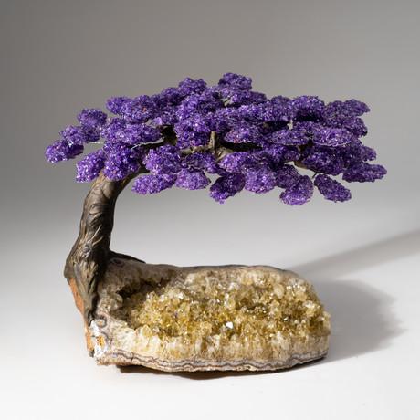 The Harmony Tree // Amethyst Tree + Quartz Crystal Matrix // Custom v.1
