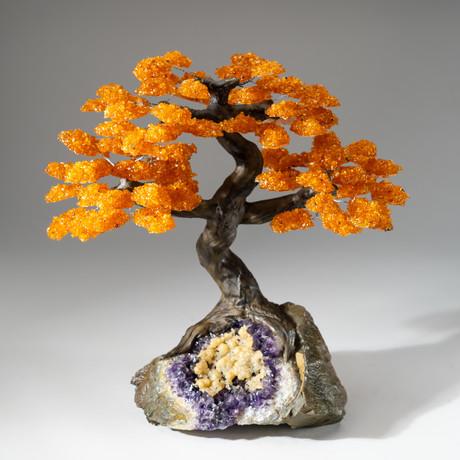 The Money Tree // Citrine Tree + Amethyst Matrix + Calcite // Custom