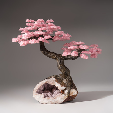 Tree of Divine Love // Rose Quartz Tree + Pink Amethyst Druzy Matrix // Custom