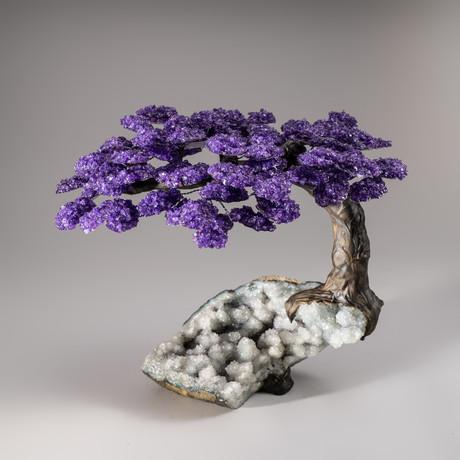 The Harmony Tree // Amethyst Tree + Quartz Crystal Matrix // Custom v.2
