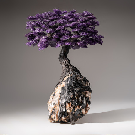 Tree of Pure Balance // Amethyst Tree + Quartz & Black Tourmaline Matrix // Custom