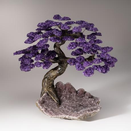 The Protection Tree // Amethyst Tree + Amethyst Druzy Matrix // Custom