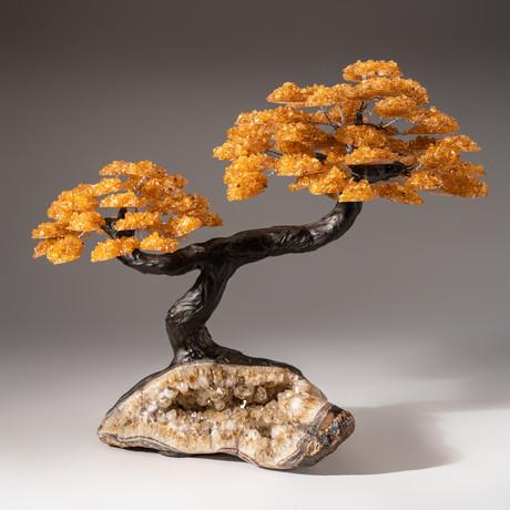 Tree of Serenity // Citrine Tree + Citrine Matrix // Custom v.2