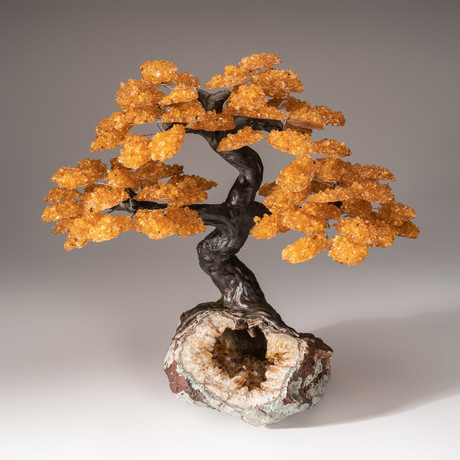 Tree of Serenity // Citrine Tree + Citrine Matrix // Custom v.1