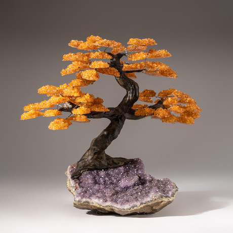 The Money Tree // Citrine Tree + Amethyst Matrix // Custom