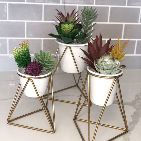Viola Table Top Planter // Set of 3