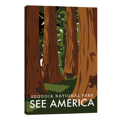 Sequoia National Park // Savvy Bader // Creative Action Network