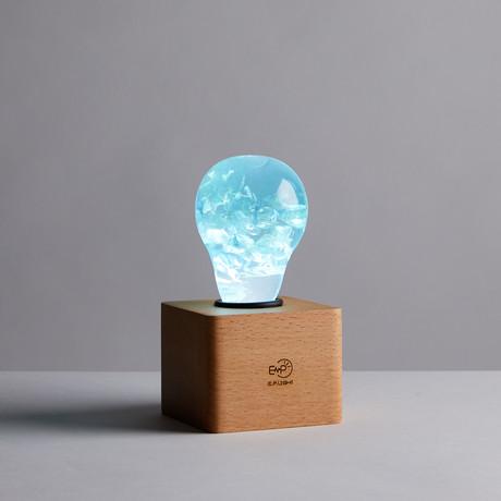 Blue Hydrangea (Bulb)