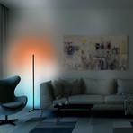 Theory Home // Floor Lamp