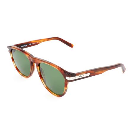 Men's SF916S Sunglasses // Tortoise