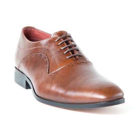 Gabinna Shoe // Brown (Euro: 37)