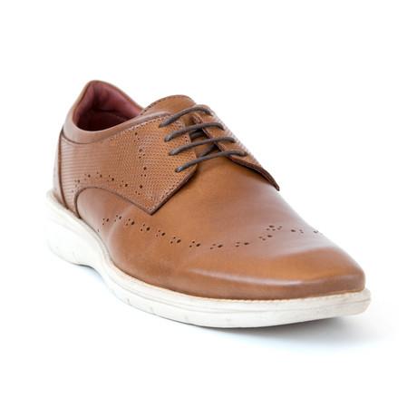 Santoro Shoe // Brown (Euro: 37)