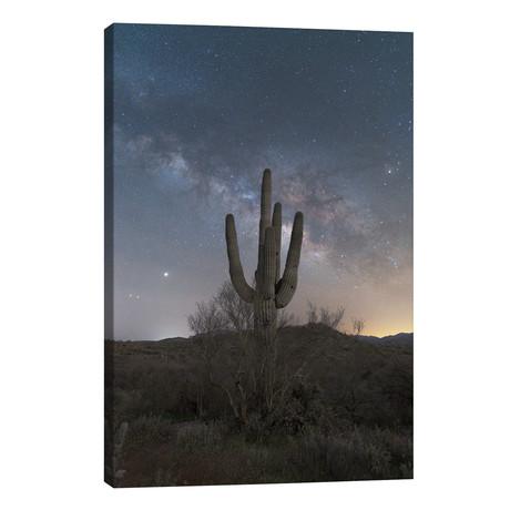 Saguaro Milky Way // Michael Perea