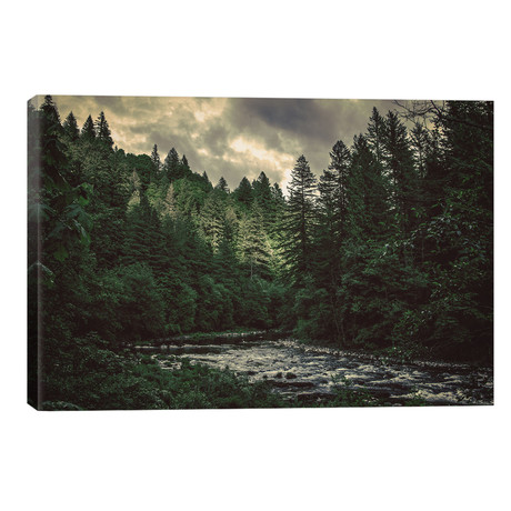 Pacific Northwest River And Trees // Nature Magick
