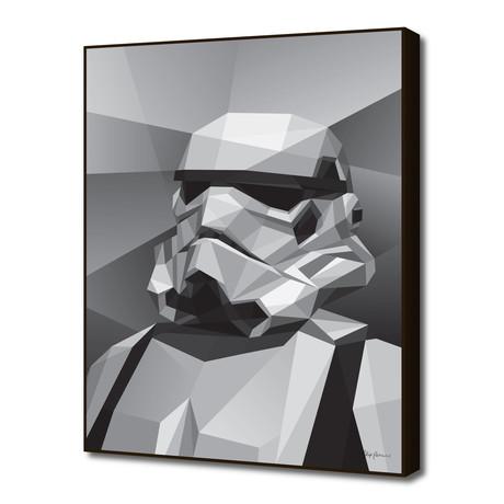 "Storm Trooper (16""W x 20""H x 1.5""D)"
