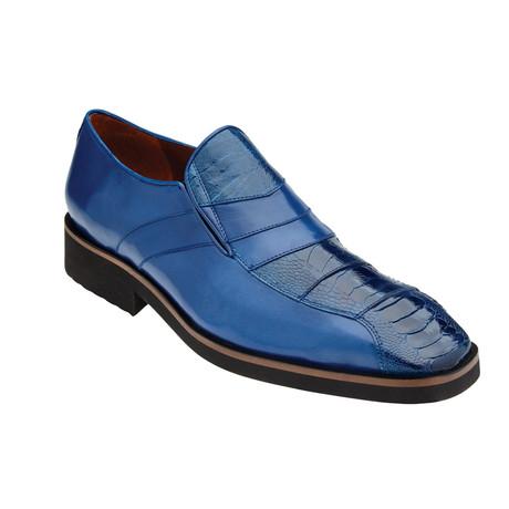 Gavino Shoes // Royal Blue (US: 8)