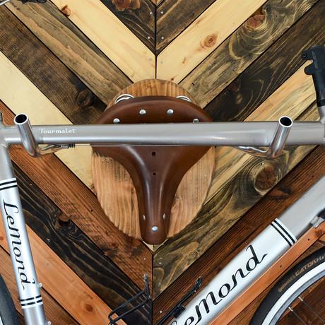 "Bicycle Wall Display // Bicycle Taxidermy // ""American Buffalo"""