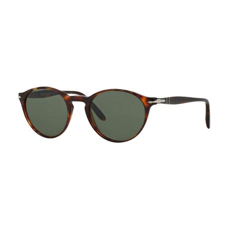 Men's Sunglasses // Havana + Green