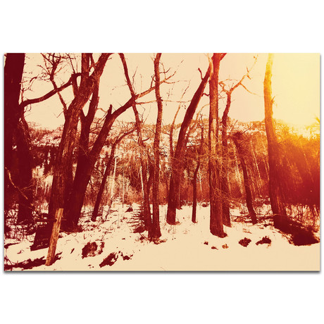 Sepia Snowfall