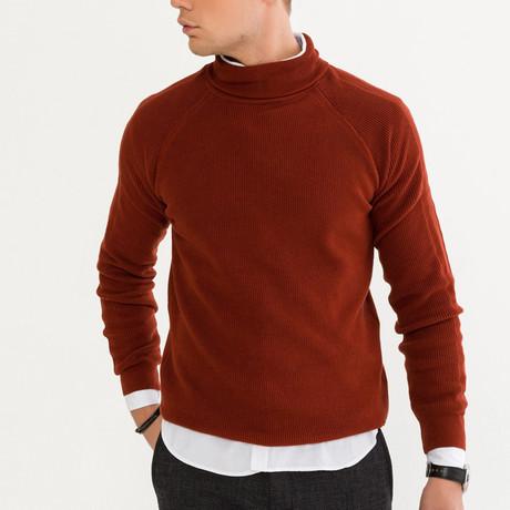 Solid Color Turtleneck Sweater // Squash (XS)