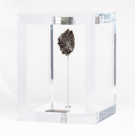 Space Box // Siberian Sikhote Alin Meteorite // Ver. 2